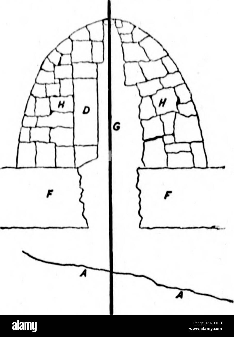 . Report on the proceedings of the United States expedition to Lady Franklin Bay, Grinnell Land [microform] . Tides; Meteorology; Meteorology; Zoology; Botany; Magnetism, Terrestrial; Astronomy; Astronomy; Gravity; Marées; Météorologie; ; ; ; ; ; ; . (.. (liiiiKi' Nil. II ; .1.1, itifl liiinl liiiiluni ; /, lion litnk. sx is i d ii. liUfd wiili slum; 1 .s, I.om: slum: Im'.iress; /'. wiili' .'-mill uak pUiiik. l nf ih,' iinrlli iii'l nf lliu main â italiiMi bmliliiin. Tlu' relerciicc |ioiiit in tliv Ivvi'l ti>|i iif a li.ir or irm, which, hating a (Imilile Qti»» ( 1 I ) n Ihu M)iilh  - Stock Image