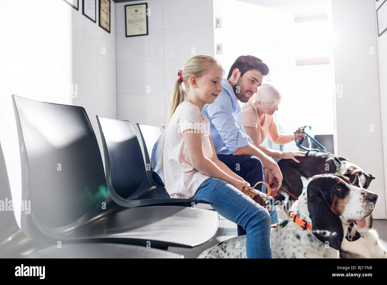 Pet owners waiting with dogs at veterinary clinic Stock Photo