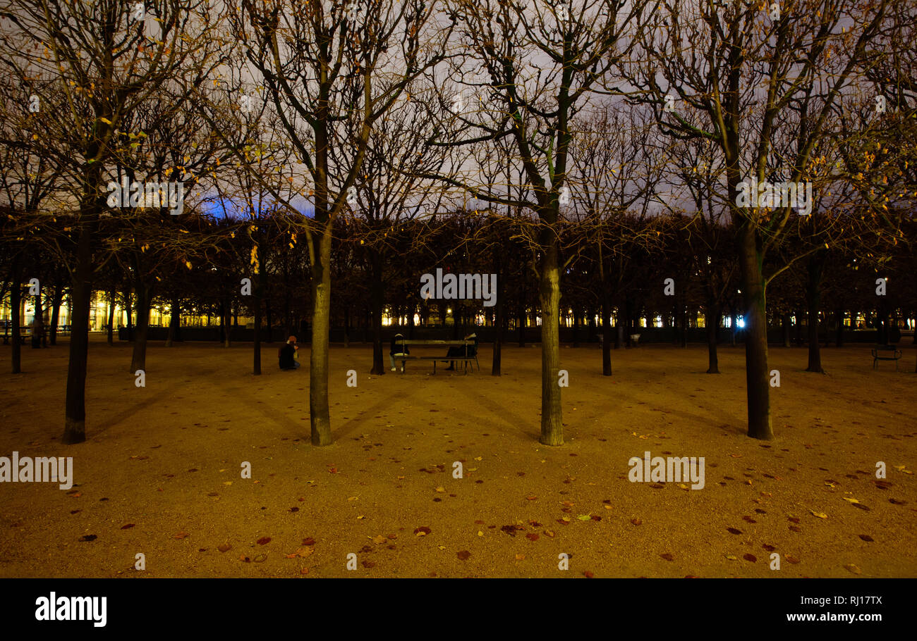 Paris (France) - Jardin du Palais Royal at night Stock Photo