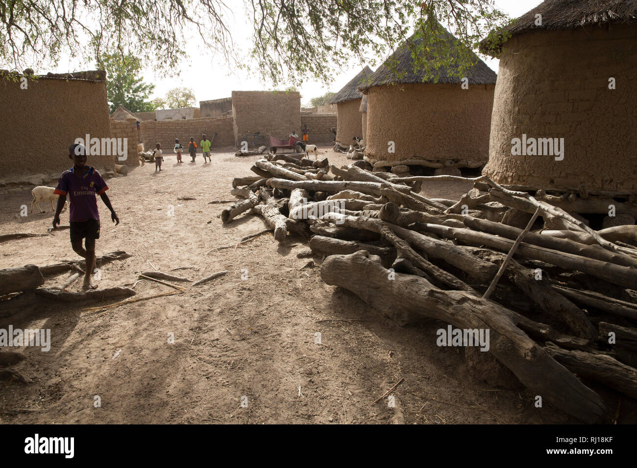 Samba village, Yako Province, Burkina Faso: Village daily life beside Collette Guiguemde's compound. Stock Photo