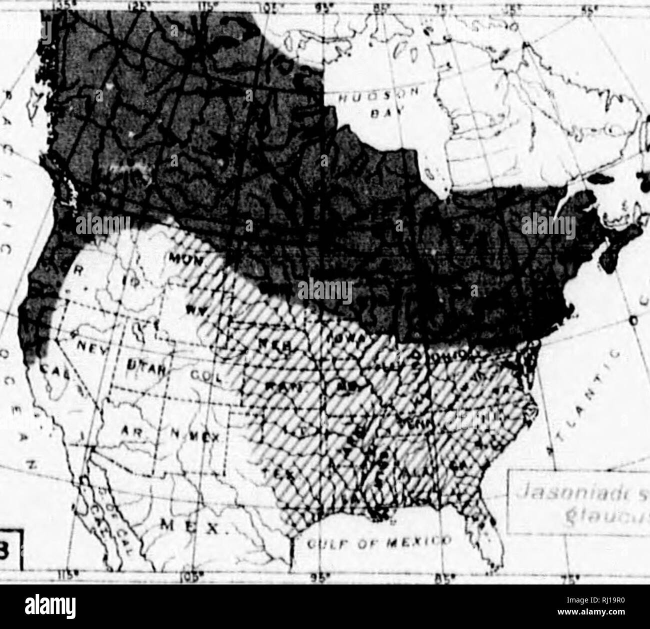 S Ib Ii Stock Photos & S Ib Ii Stock Images - Alamy Ib Black And White Map Of Usa on black and white map of asia, latitude and longitude of usa, black and white portraits of women,
