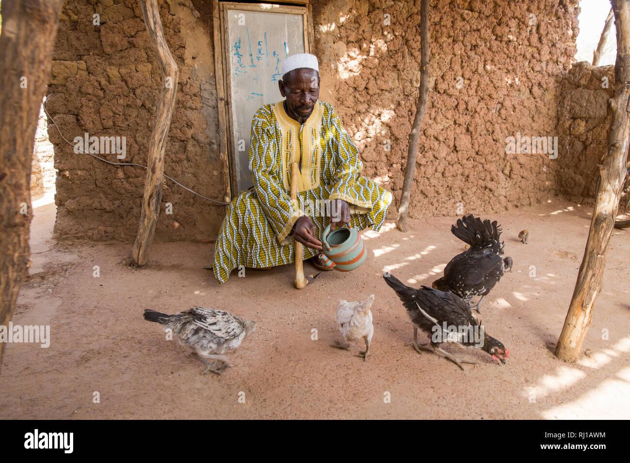 Kourono village, Yako province, Burkina Faso; Moussa Mande's father feeding poultry. Stock Photo