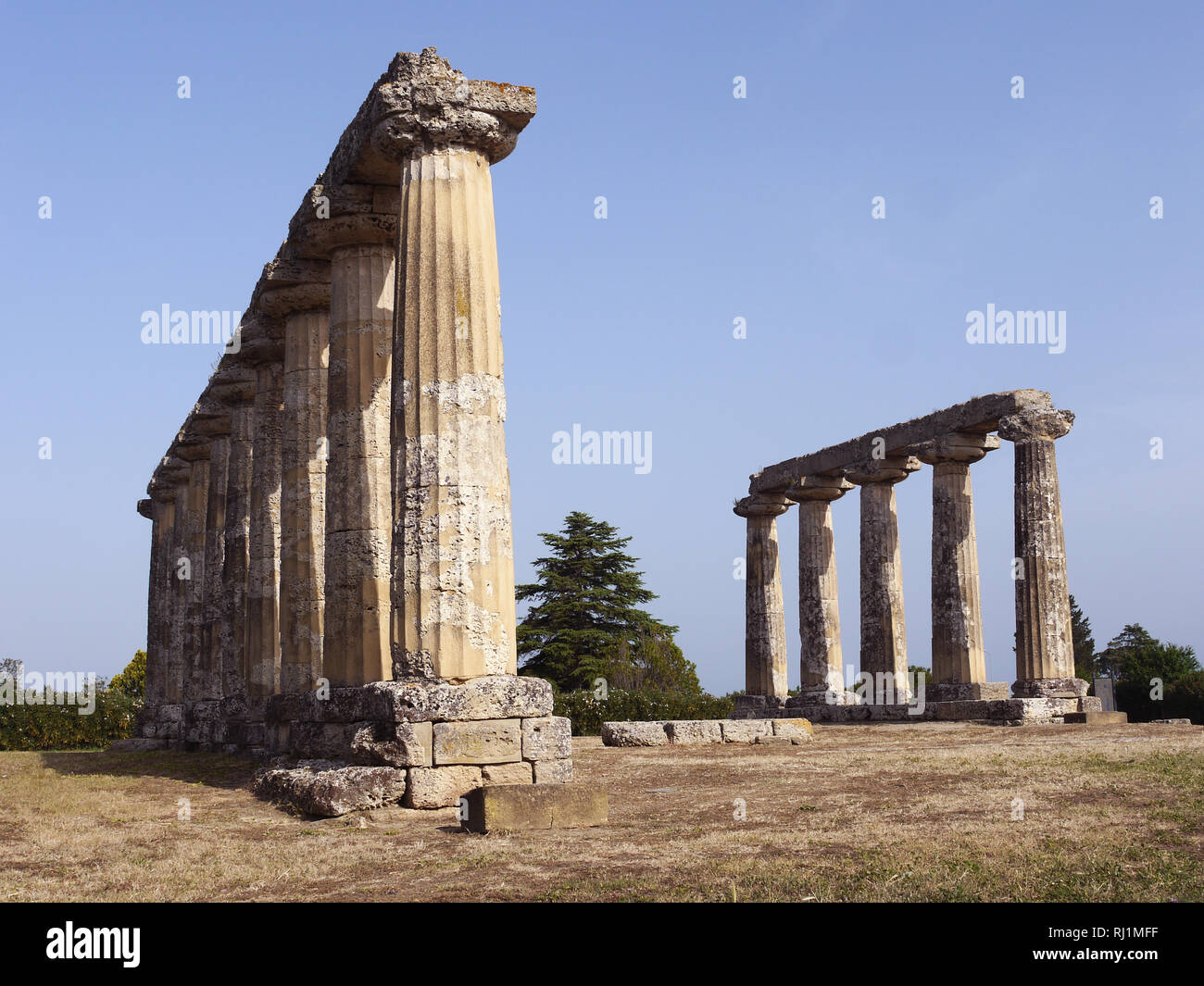 Santuary of Hera, Tavola Palatine, Benalda, Metaponto in Southern Italy Stock Photo