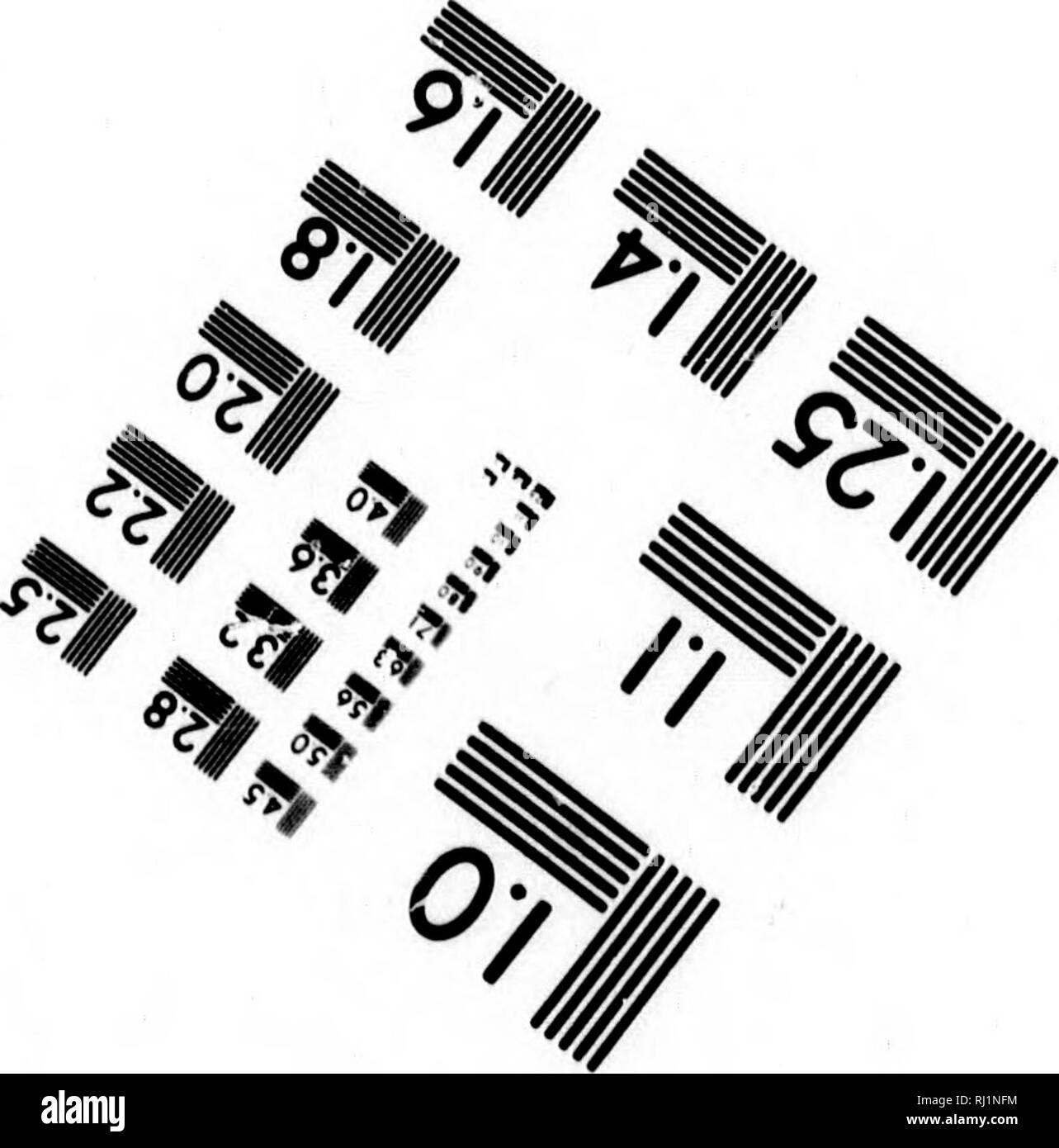 """. Historie von Grönland [microform] : enthaltend die Beschreibung des Landes und der Einwohner u. nebst beträchtlichen Zusätzen und Anmerkungen zur natürlichen Geschichte bis auf das Jahr 1769. Inuit; Natural history; Inuit; Sciences naturelles. 1.25 1.4 1.6 â ⢠6"""" »«â. Photographie Sdences Corporation 23 WEST MAIN STREET WEBSTER, N.Y. 14580 (716) 872-4503. Please note that these images are extracted from scanned page images that may have been digitally enhanced for readability - coloration and appearance of these illustrations may not perfectly resemble the original work.. Cranz,  - Stock Image"""