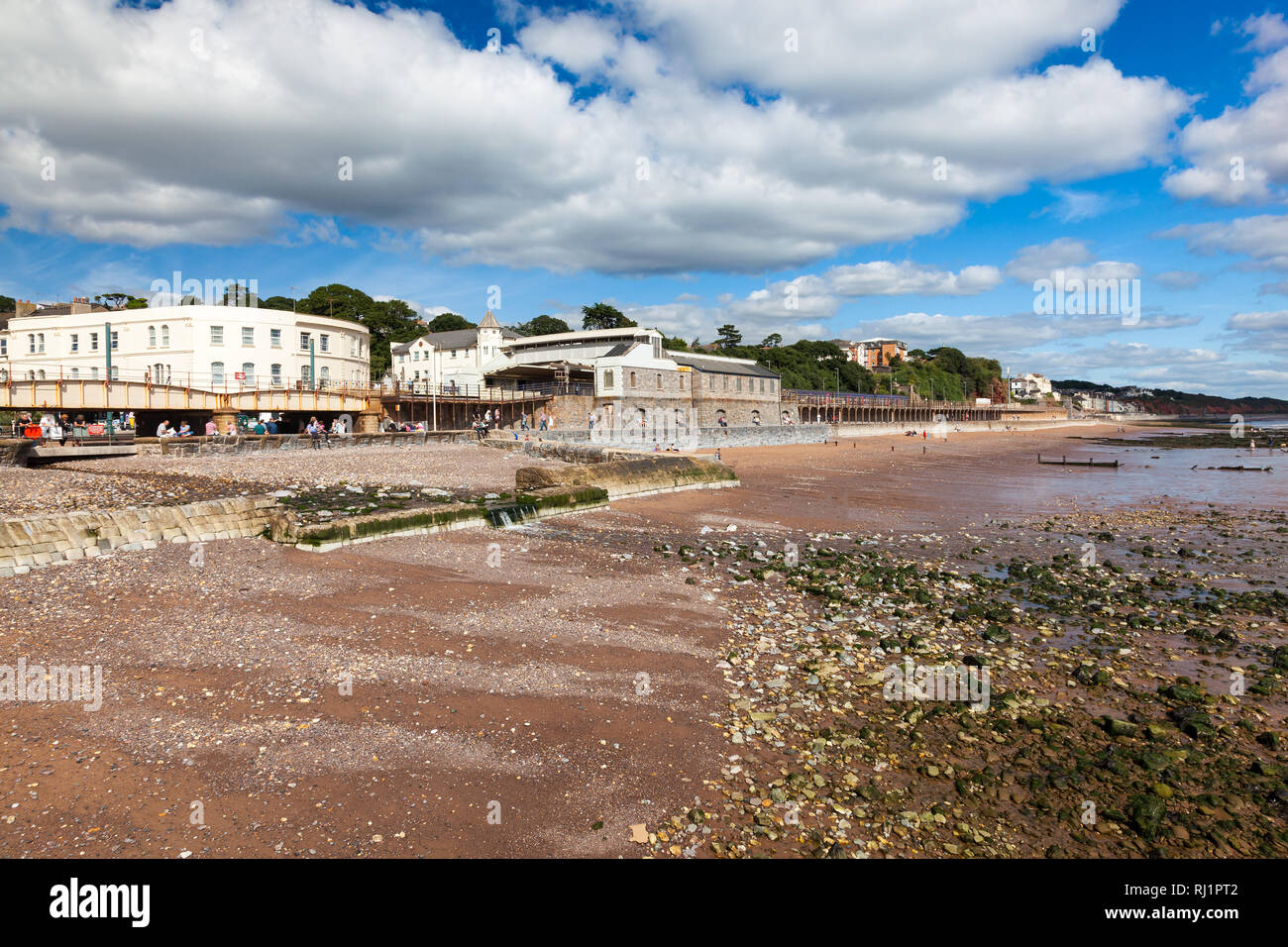 Summer overlooking the beach at Dawlish Devon England UK Europe - Stock Image