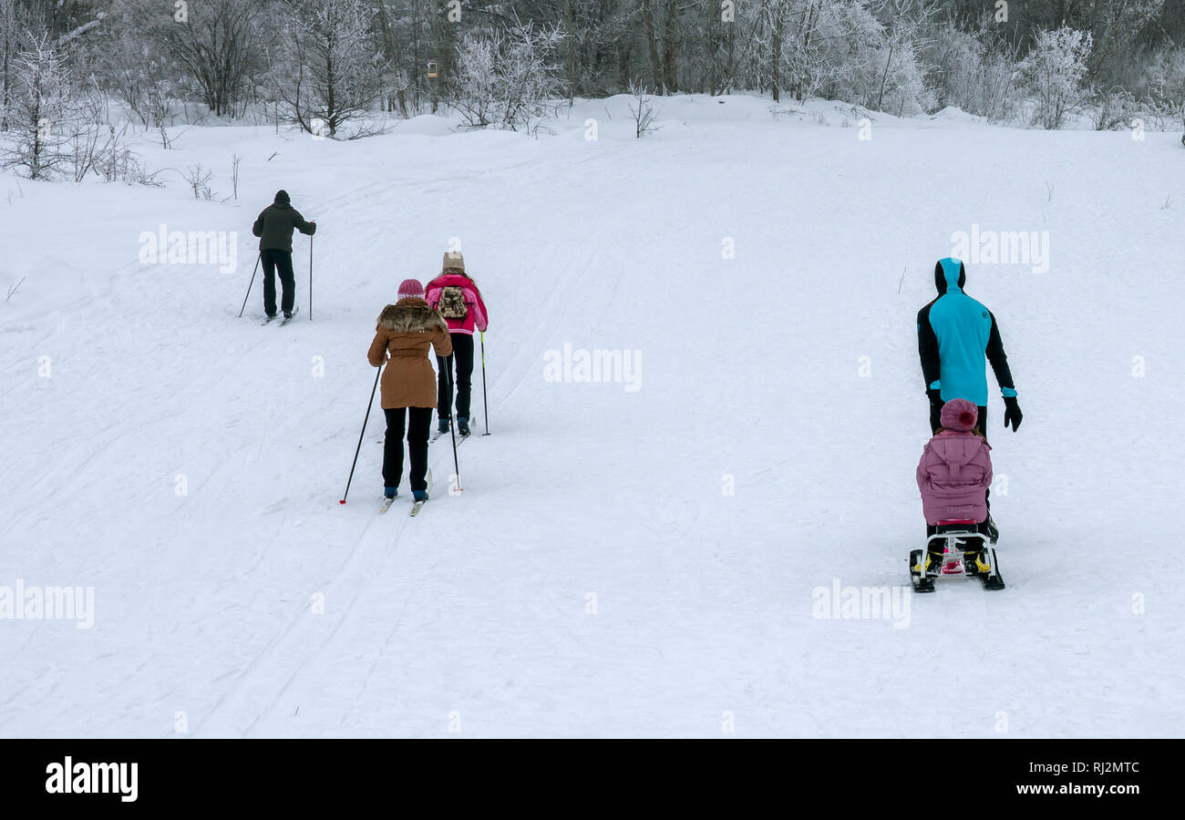 People running on skis on the ski track in the woods, the view from the back - Stock Image