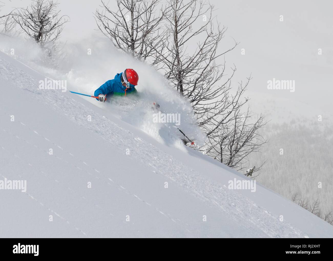 Spring powder snow in the Canadian Rockies - Stock Image