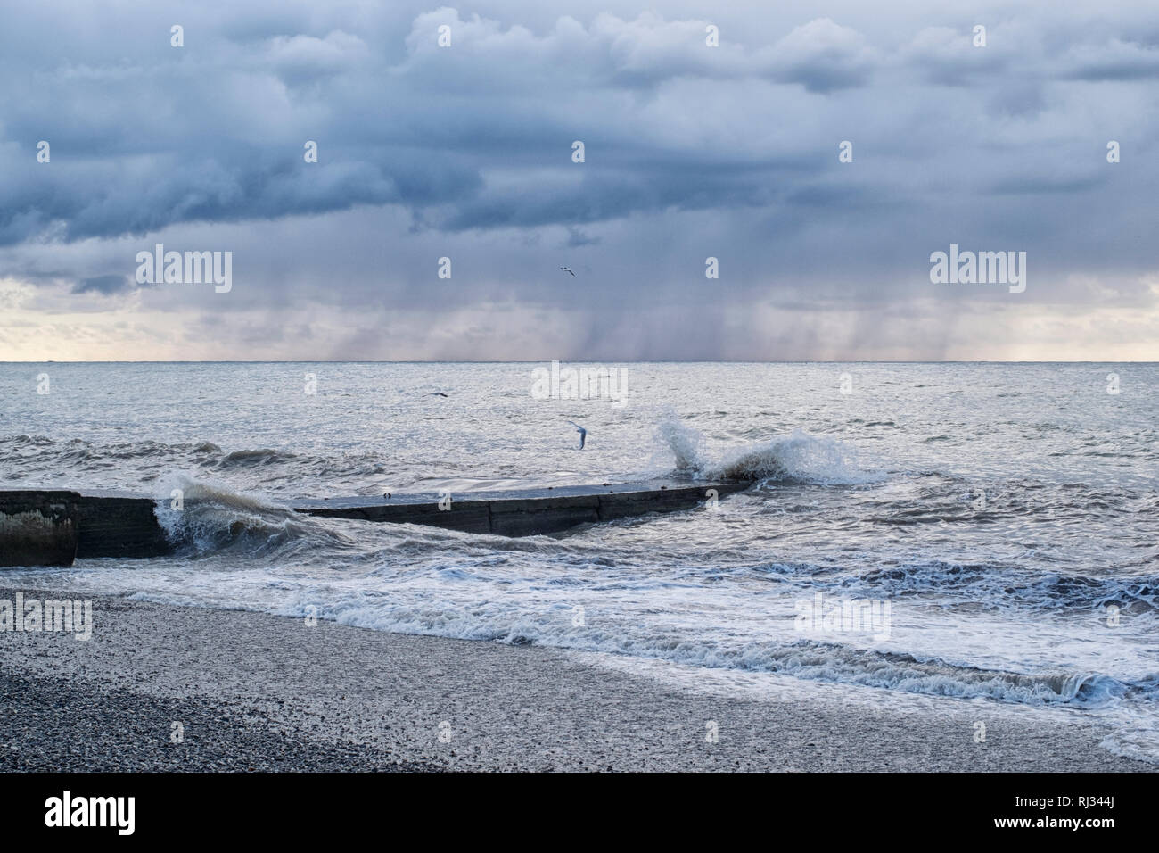 Seascape with a concrete pier during a storm in the rain with flying seagulls Stock Photo