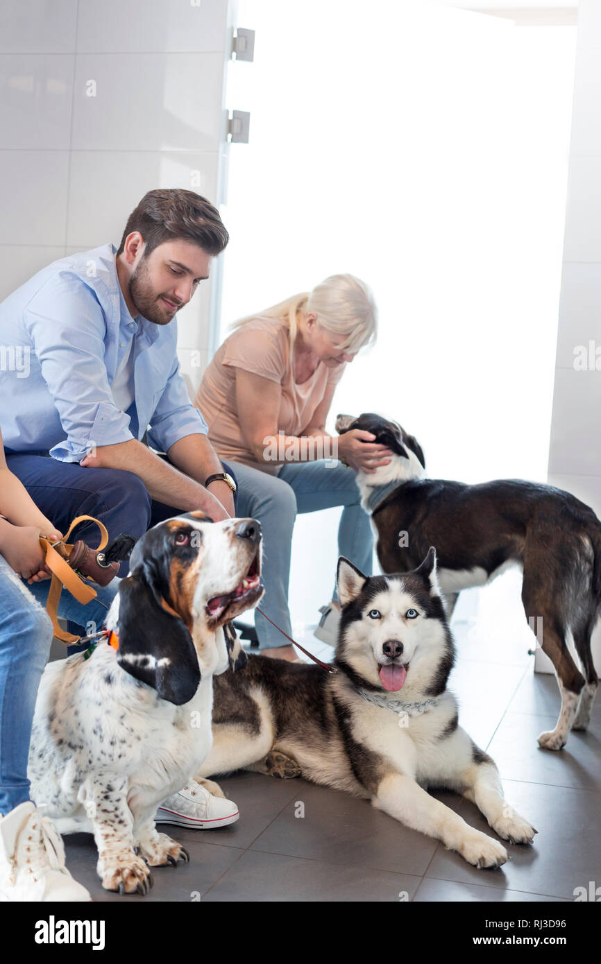 Pet owners waiting with dogs at veterinary clinic - Stock Image