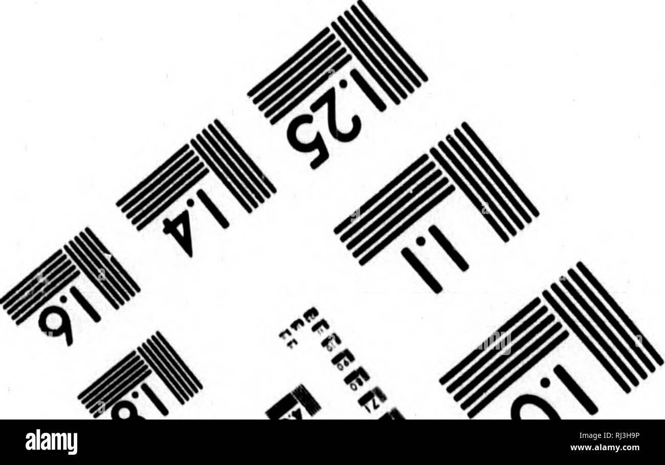 . Landreis van 't Prins van Wallis Fort aan Hudsons Baai naar den Noorder-Oceaan [microform] : ondernomen op bevel van de Maatschaapij der Hudsons Baai ter ontdekkinge van koper-mijnen, een noord-west doortogt, enz. in de jaren 1769, 1770, 1771 en 1772. Matonabbee, 1736?-1782; Matonabbee, 1736?-1782; Indians of North America; Natural history; Indiens; Sciences naturelles. ^ Photographic Sdences Corporation. ^9) ^ ^ ^ 23 WEST MAiN STREC» WEBSTEr, .Y. 14580 ,716) ï^/2-450?. Please note that these images are extracted from scanned page images that may have been digitally enhanced for readability  - Stock Image