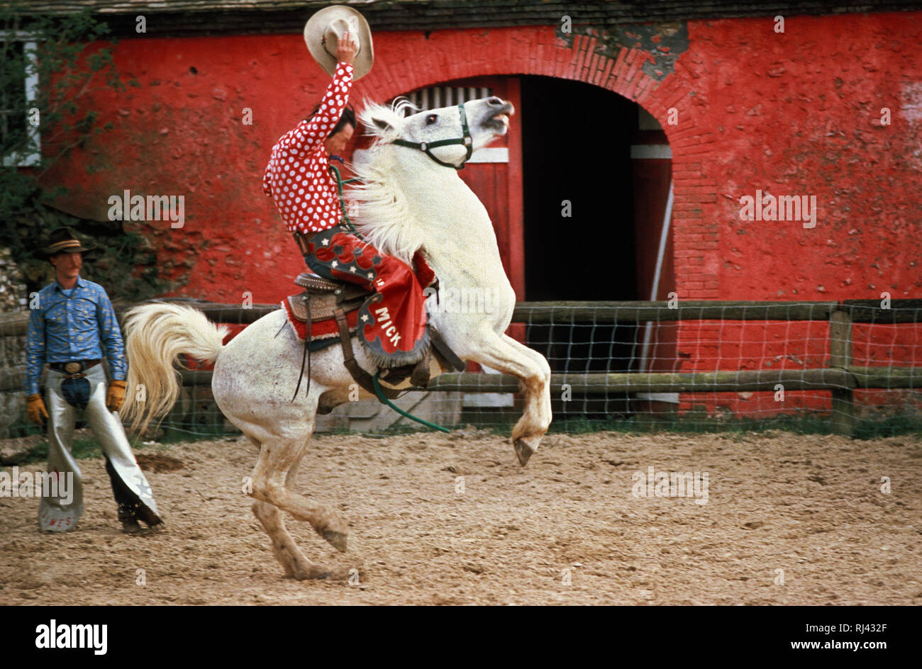 Rodeo, Cowboy, Reiter, - Stock Image