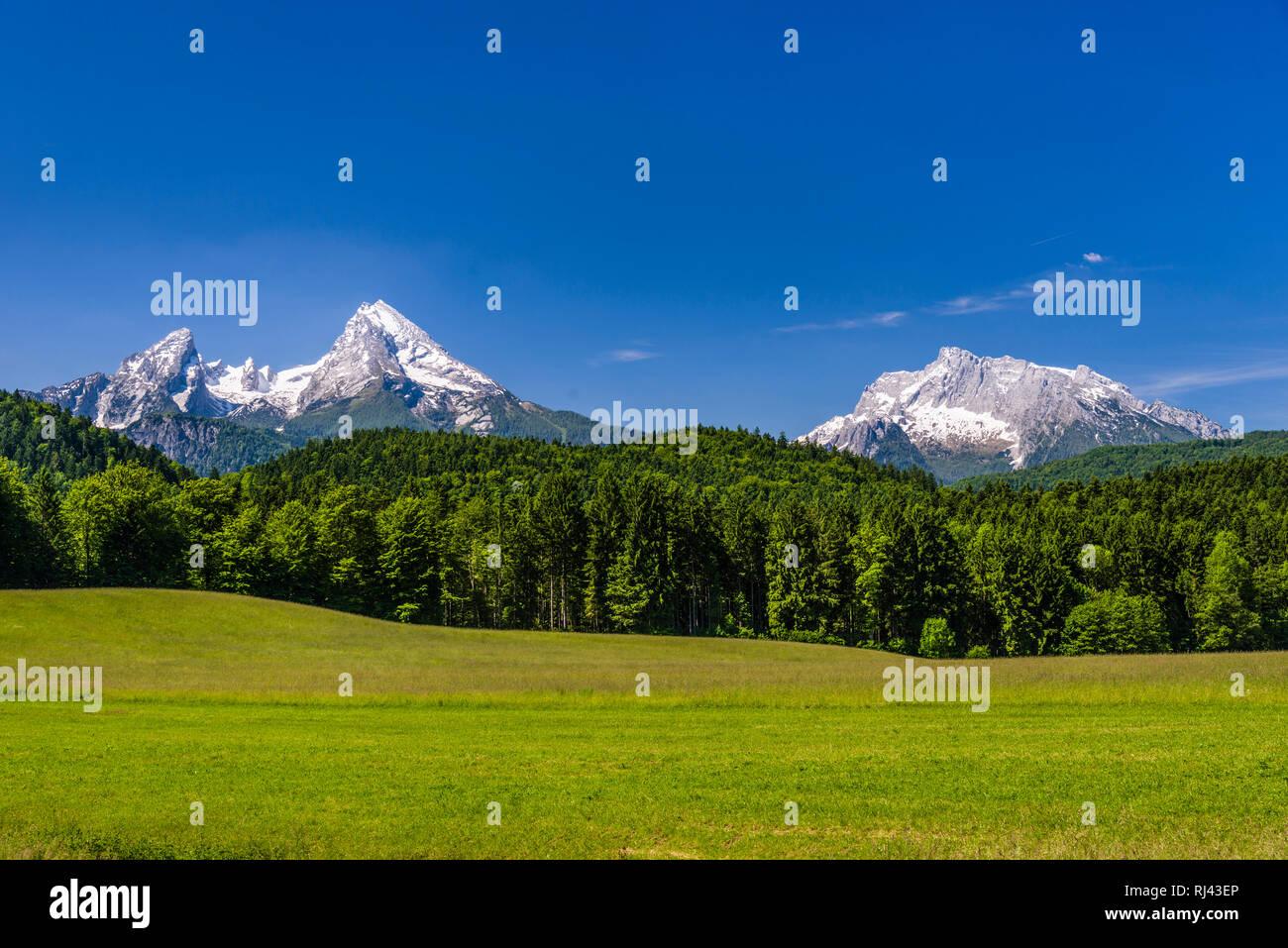 Deutschland, Bayern, Oberbayern, Berchtesgadener Land, Bischofswiesen, Blick auf Watzmann und Hochkalter, Stock Photo