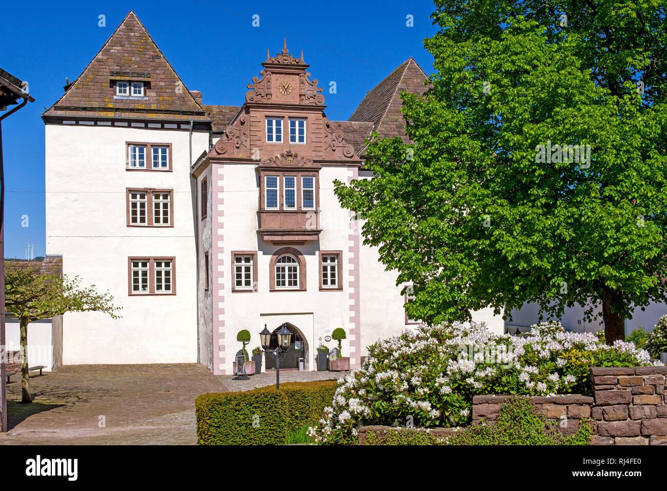 Europa, Deutschland, Nordrhein-Westfalen, Weserbergland, H?xter, Porzellanmanufaktur Schloss F?rstenberg - Stock Image
