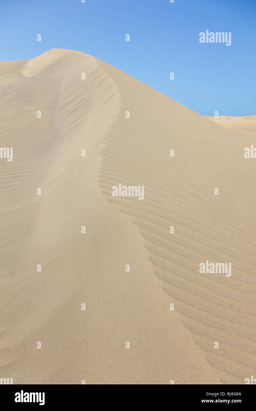 D?ne, Maspalomas, Playa del Ingles, Blauer Himmel, Gran Canaria, Spanien - Stock Image