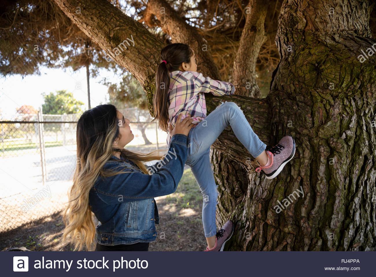 Latinx sisters climbing tree in park - Stock Image