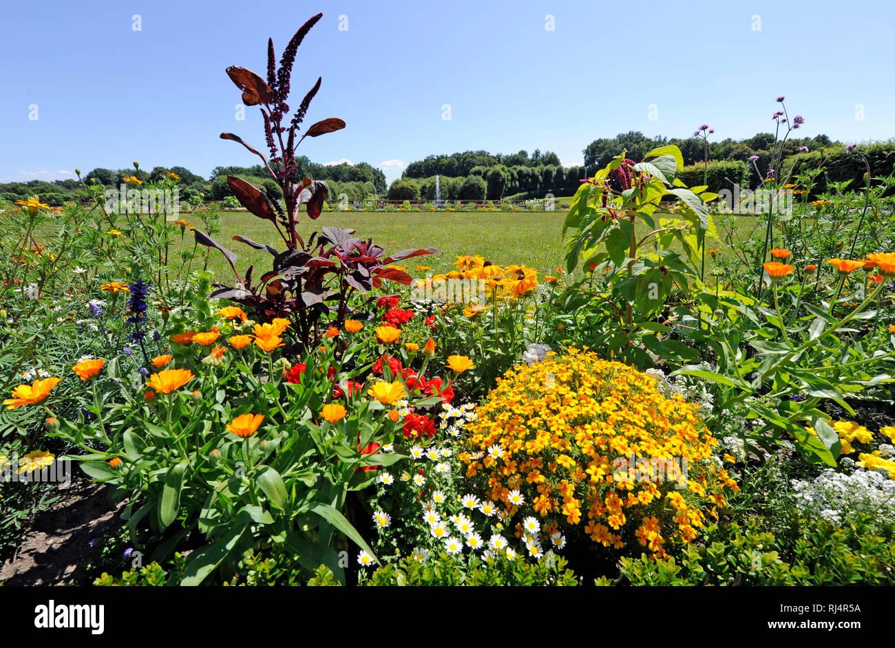 ?ppige Blumenrabatte aus bunten Sommerblumen und verschiedenartigen Stauden, - Stock Image