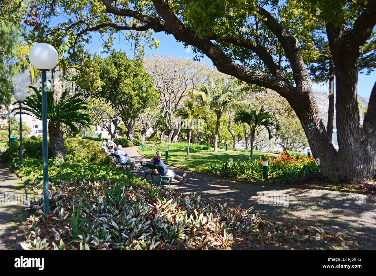 Funchal, Stadtpark Santa Catarina - Stock Image
