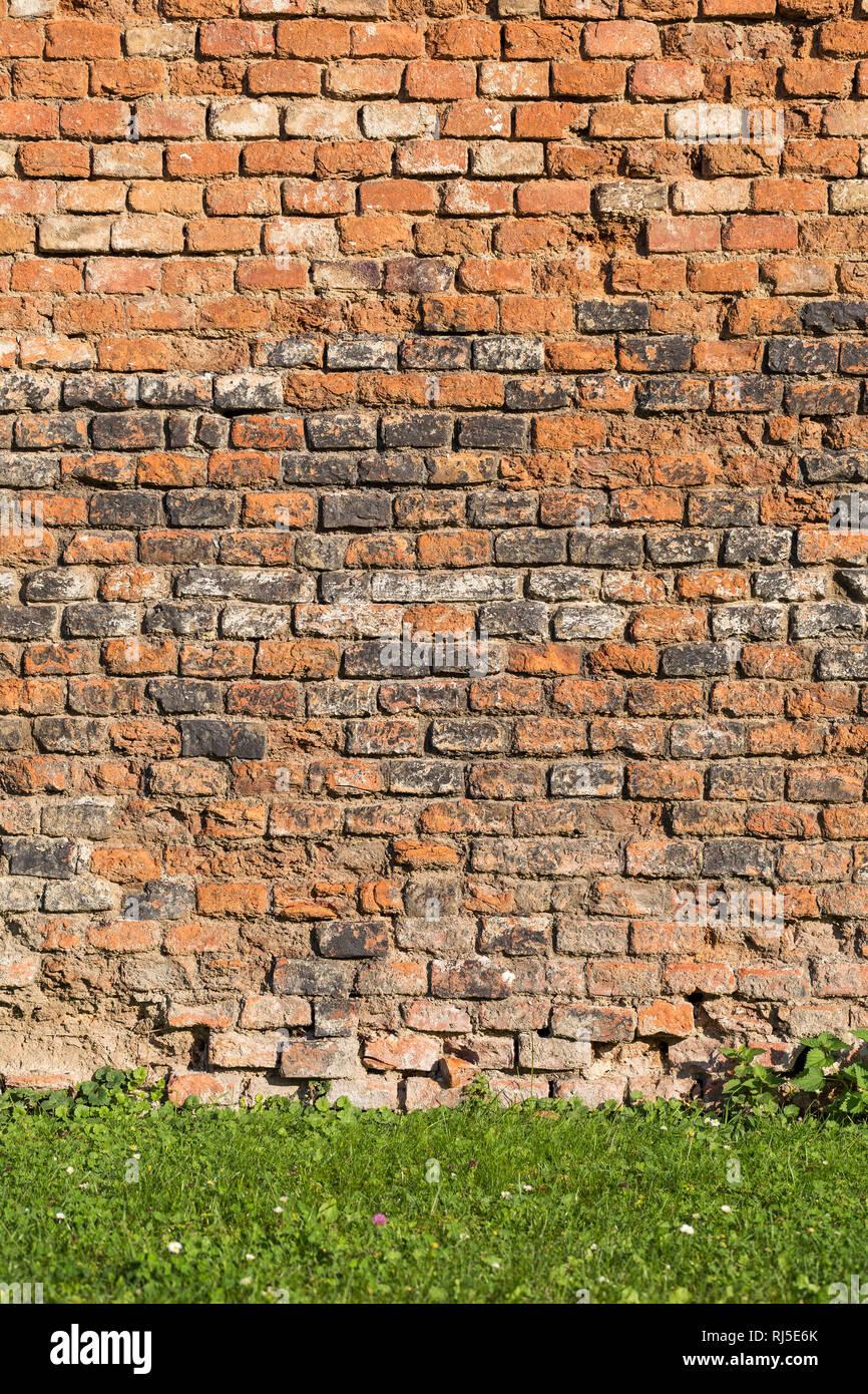 Alte Ziegelmauer und Wiese, aufgenommen in Vösendorf, Niederösterreich, Österreich, - Stock Image
