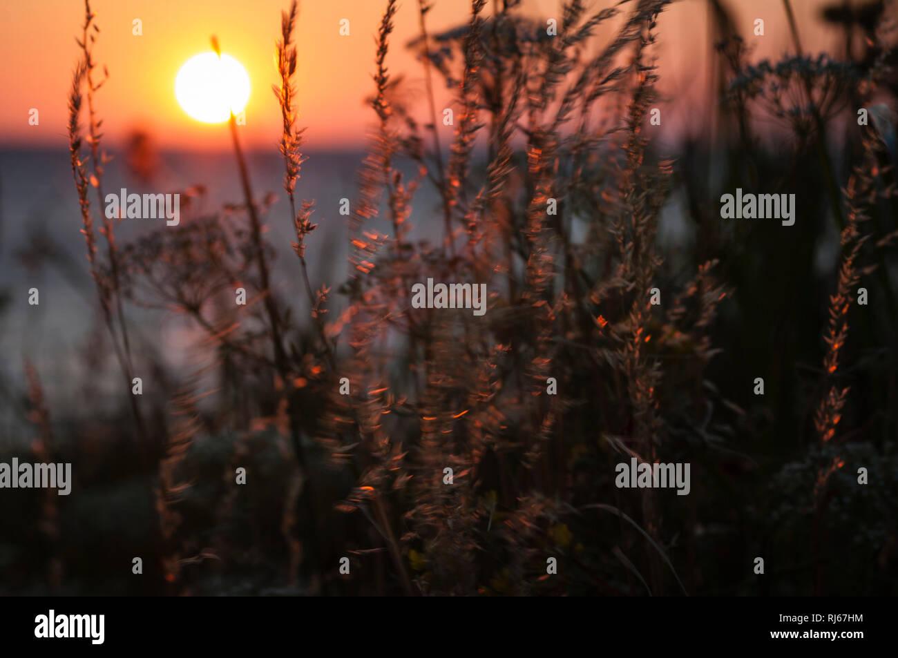 Europa, Deutschland, Mecklenburg-Vorpommern, Insel Poel, Sonnenuntergang über der Ostsee - Stock Image