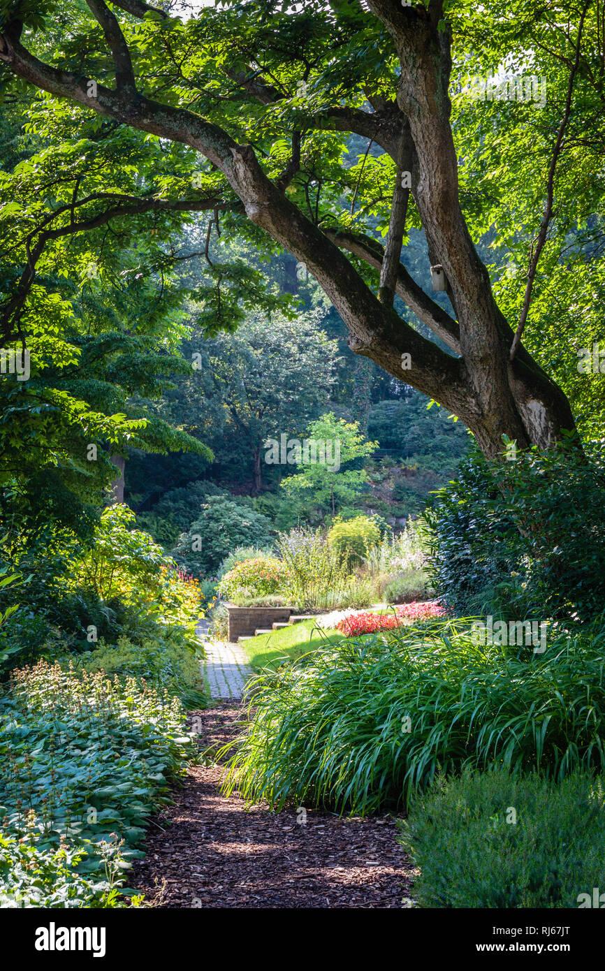 Europa, Deutschland, Nordrhein-Westfalen, Bielefeld, Im Botanischen Garten, - Stock Image