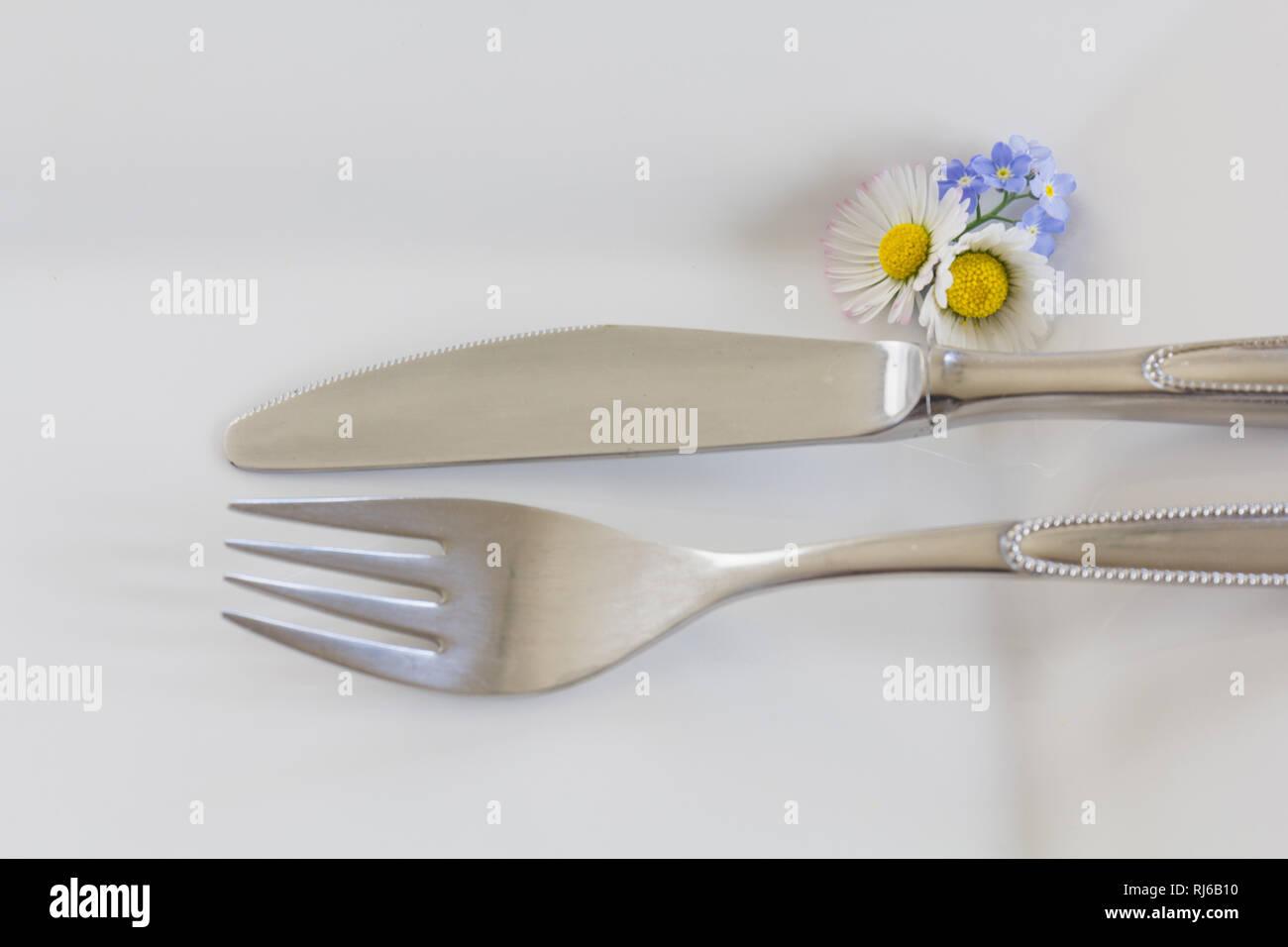 Messer und Gabel auf einem weißen Teller, der Tisch ist gedeckt, - Stock Image