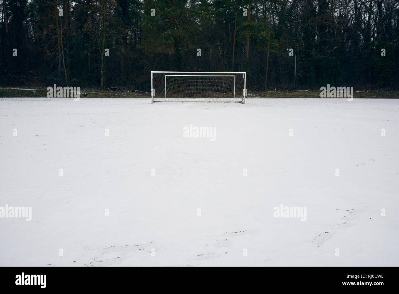 Fußballtor im Winter an einem Waldrand, Spielfeld, Schnee - Stock Image