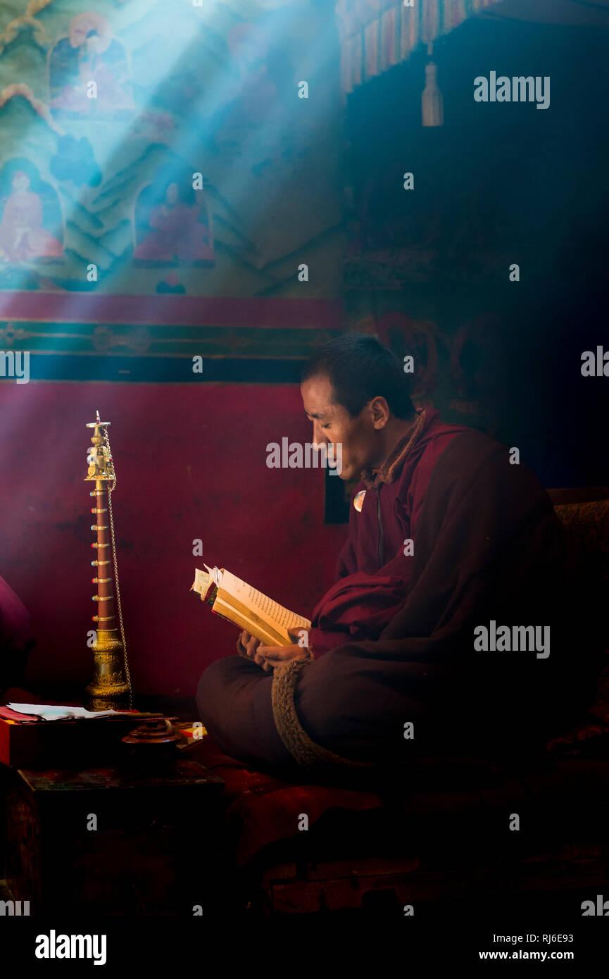 Tibet, Mönch im Kloster Rongbuk - Stock Image