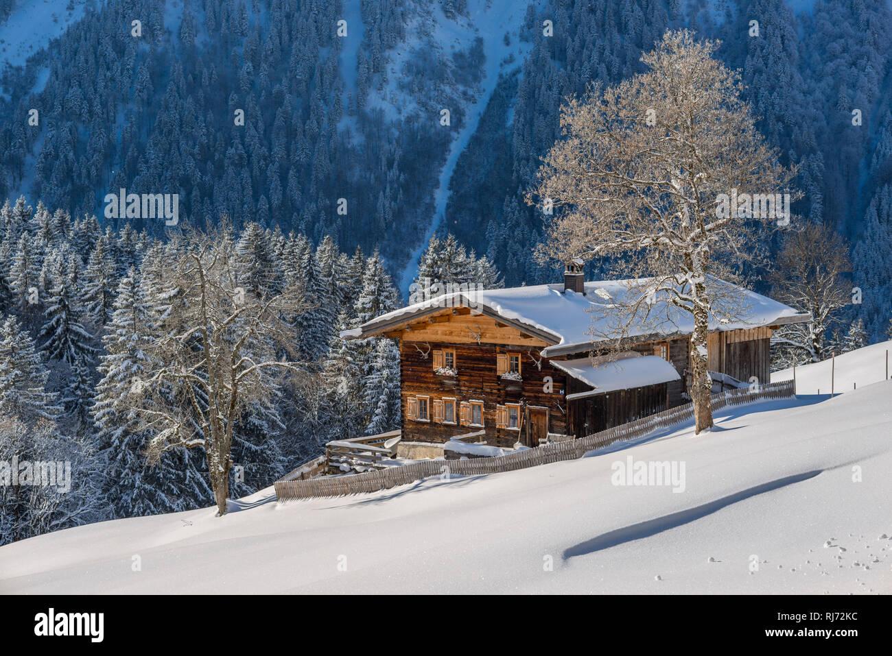 Bauernhof, Gerstruben, ein ehemaliges Bergbauerndorf im Dietersbachtal bei Oberstdorf, Allgäuer Alpen, Allgäu, Bayern, Deutschland, Europa Stock Photo