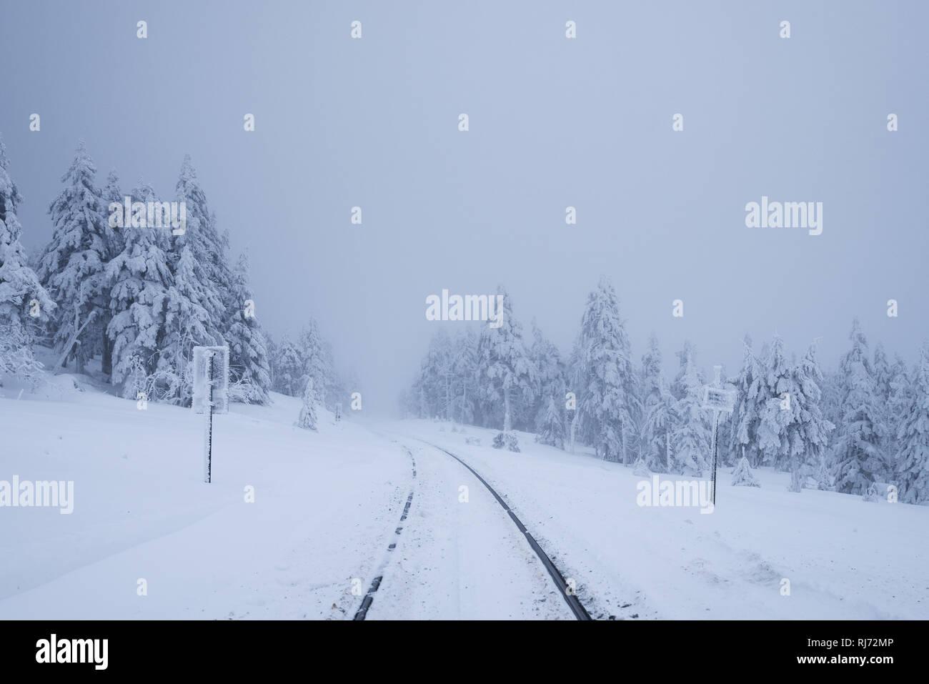 Bahnschienen am Brocken, Harz, Schierke, Deutschland Stock Photo