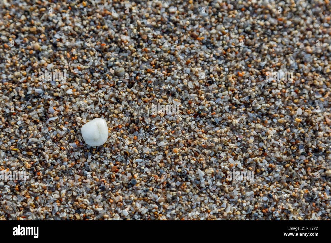 Sand, Kies und Muscheln findet man am Strand, Nahaufnahme, - Stock Image