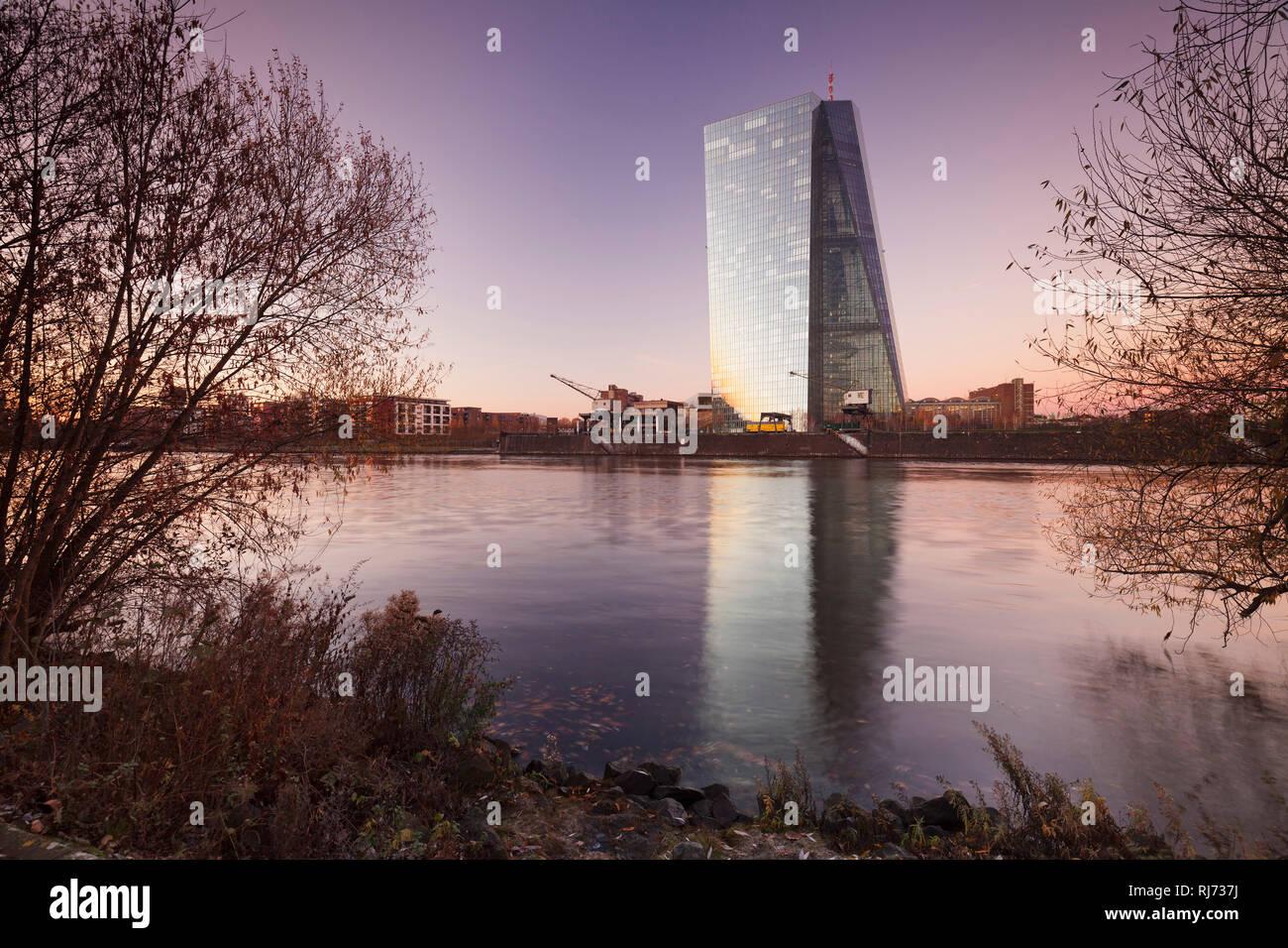 Blick über den Main zur Europäischen Zentralbank, Frankfurt, Hessen, Deutschland - Stock Image