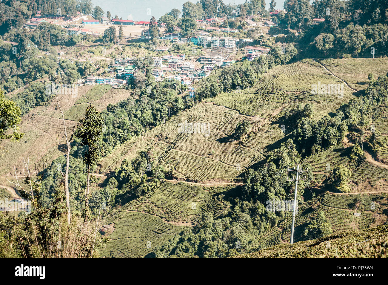 The relief landscape of the tea plantation. 'Kanan Devan Hills Plantations, Munnar' Located in Idukki district in Indian state of Kerala. Noted key to - Stock Image