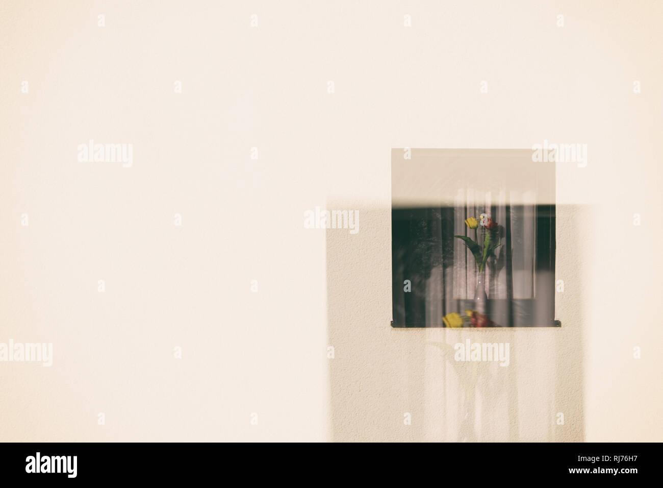 Doppelbelichtung einer Fassade mit kleinem Fenster und Blumenvase, - Stock Image