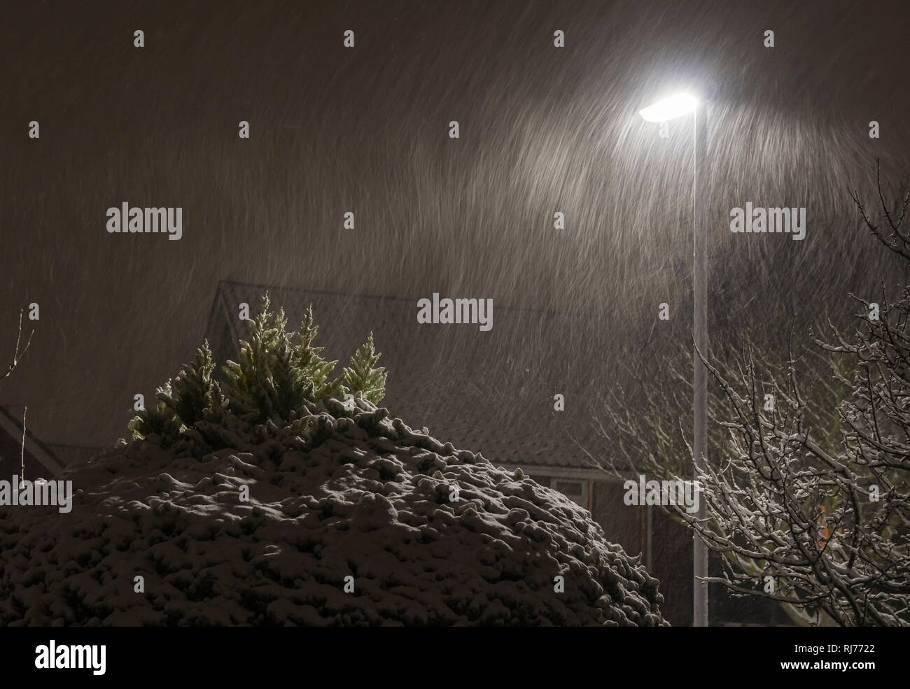Falling snow by a lamppost at night. Long shutter blurred effect of it snowing in the dark. - Stock Image