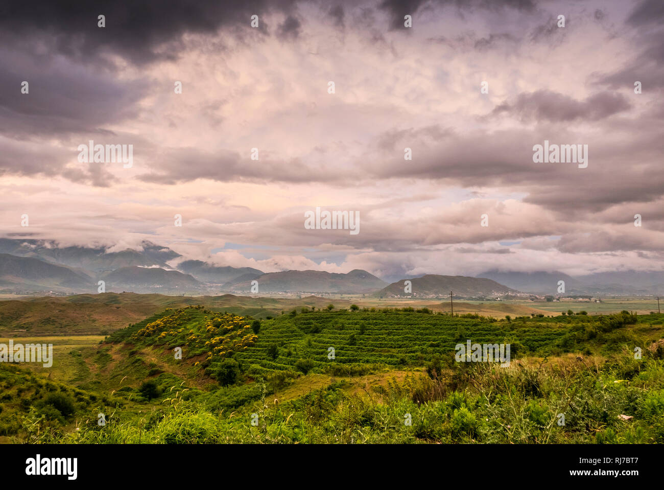 Albanien, Balkanhalbinsel, Südosteuropa, Republik Albanien, - Stock Image