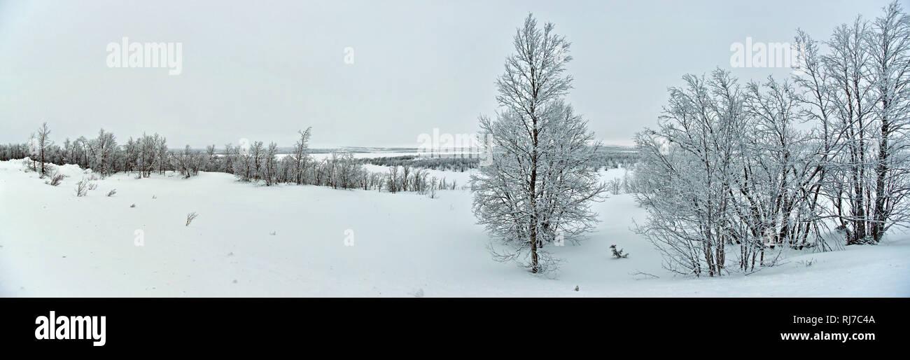Winterlandschaft zwischen Kautokeino und Hetta an der Grenze zwischen Finnland und Norwegen - Stock Image