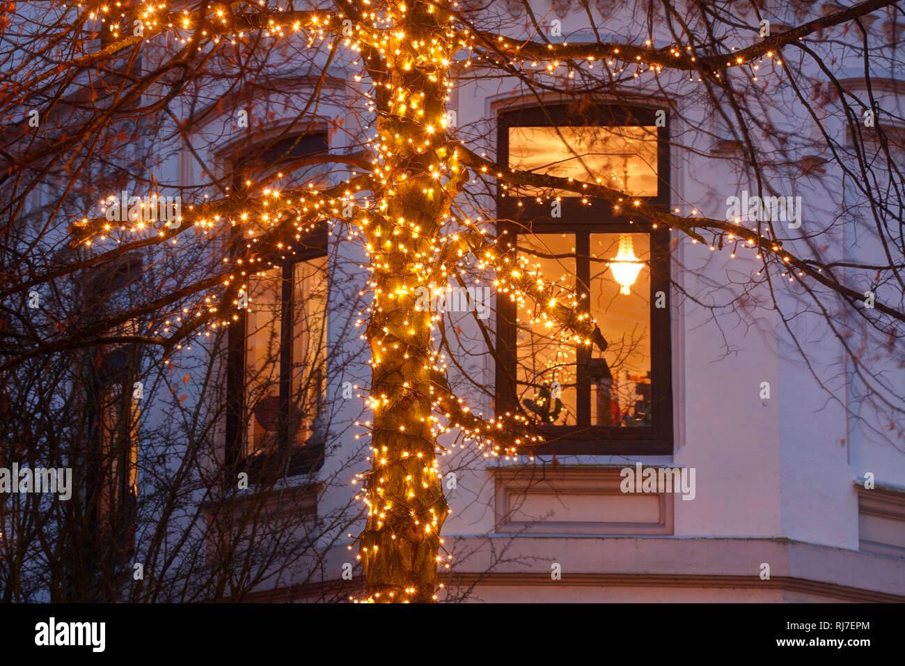 Weihnachtsbeleuchtung Am Fenster.Weihnachtsbeleuchtung Baum Fenster Viertel Bremen Deutschland