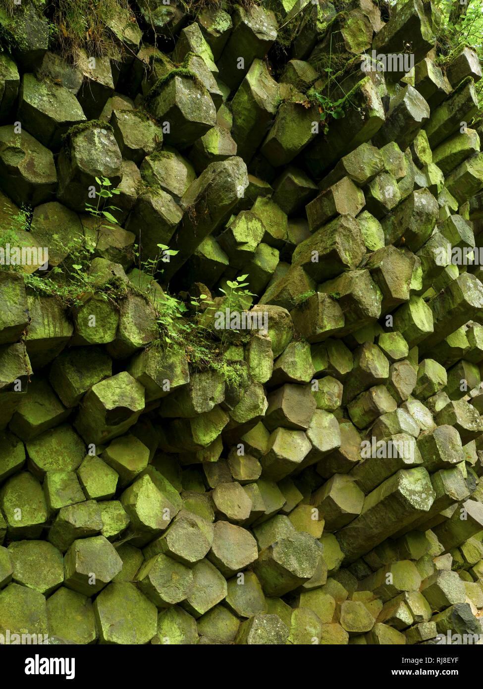 Deutschland, Bayern, Naturpark Bayrische Rhön, UNESCO-Biosphärenreservat, Basaltprismenwand am Gangolfsberg, Naturschutzgebiet Lange Rhön Stock Photo