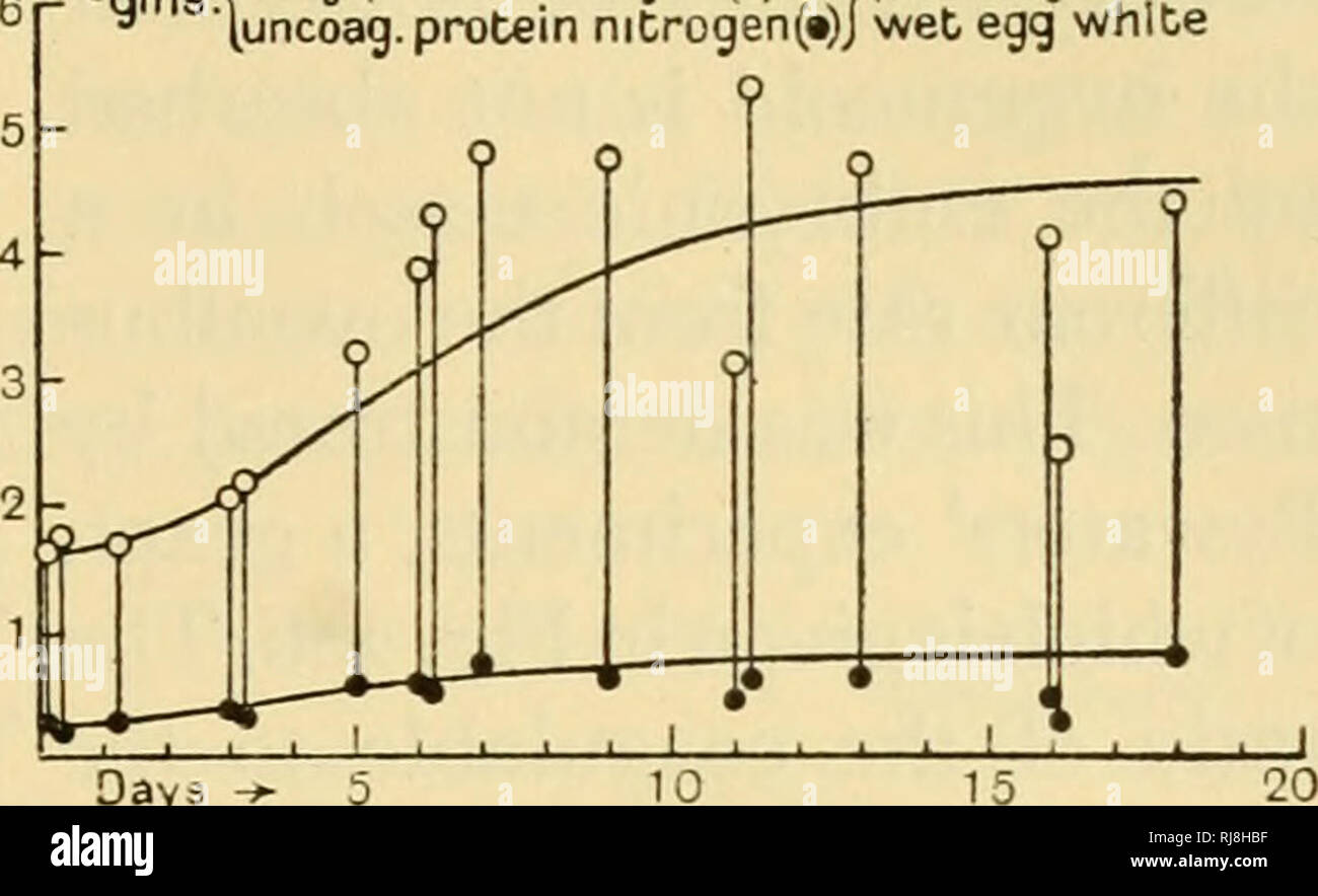 Chemical embryology  Embryology  SECT  9] PROTEIN METABOLISM