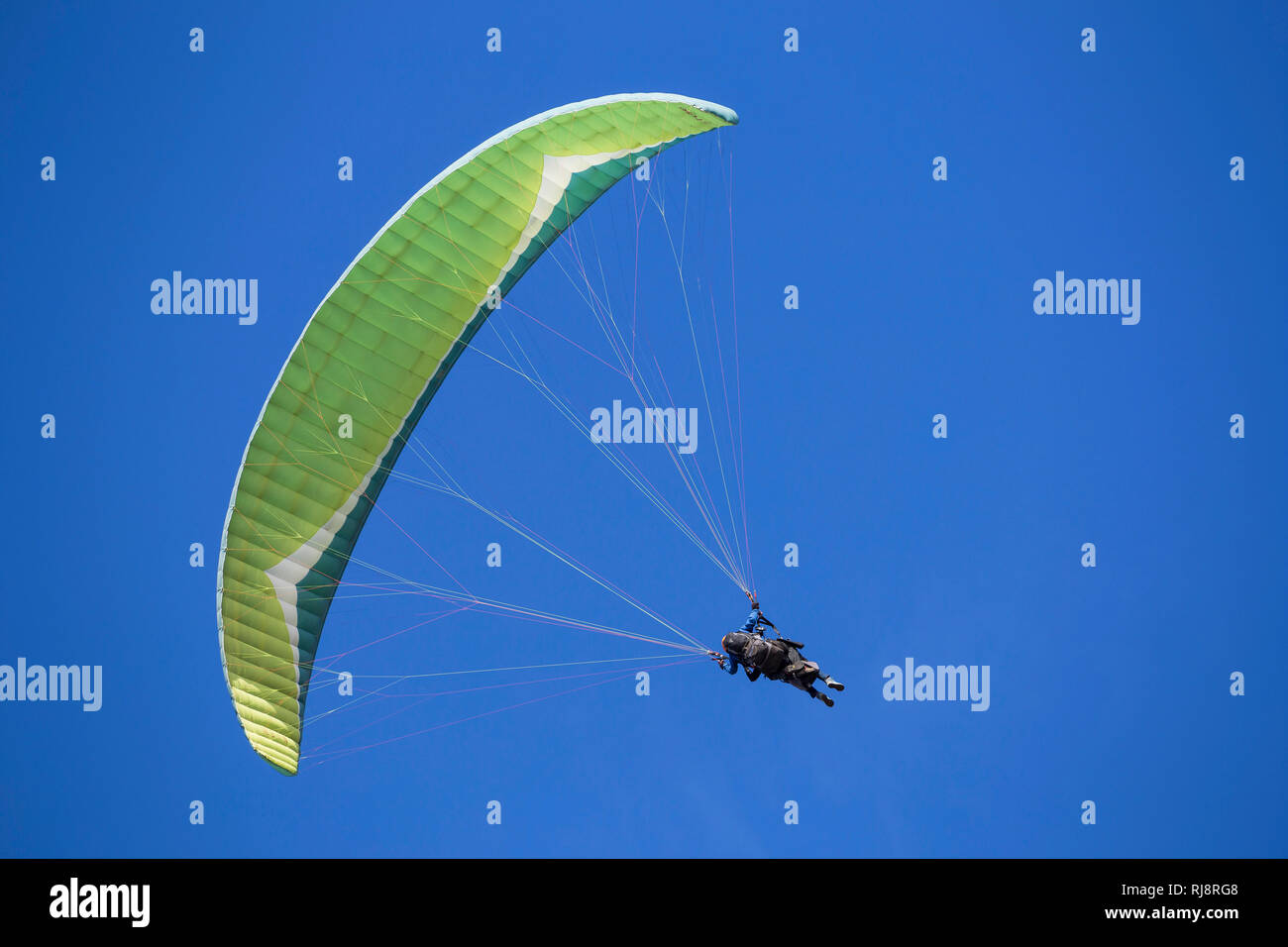 Gleitschirmflieger, Tandemflug, Puerto Naos, La Palma, Kanarische Inseln, Spanien - Stock Image