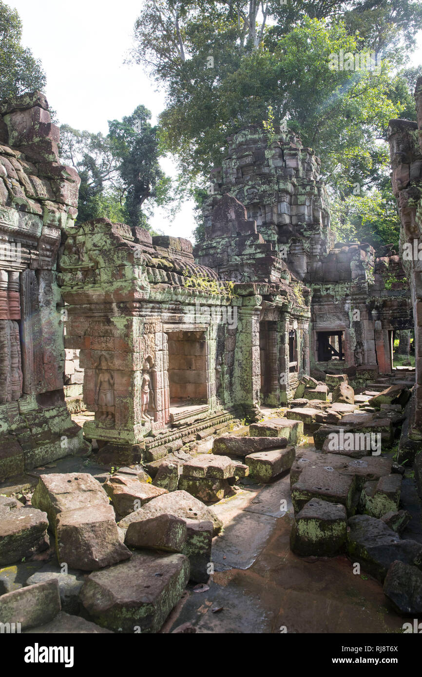 Siem Reap, Angkor, Stadt Angkor Thom, ehemalige Stadt die damals die Größe von Manhattan hatte, heute eine touristische Sehenswürdigkeit und Großteils - Stock Image