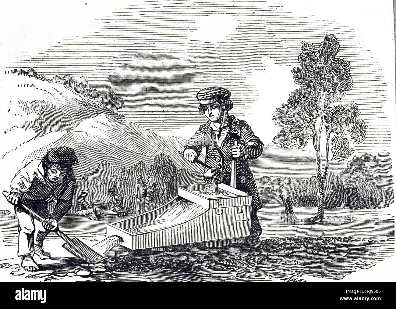 An engraving depicting children cradling for gold during the New South Wales gold rush, Australia. Dated 19th century - Stock Image