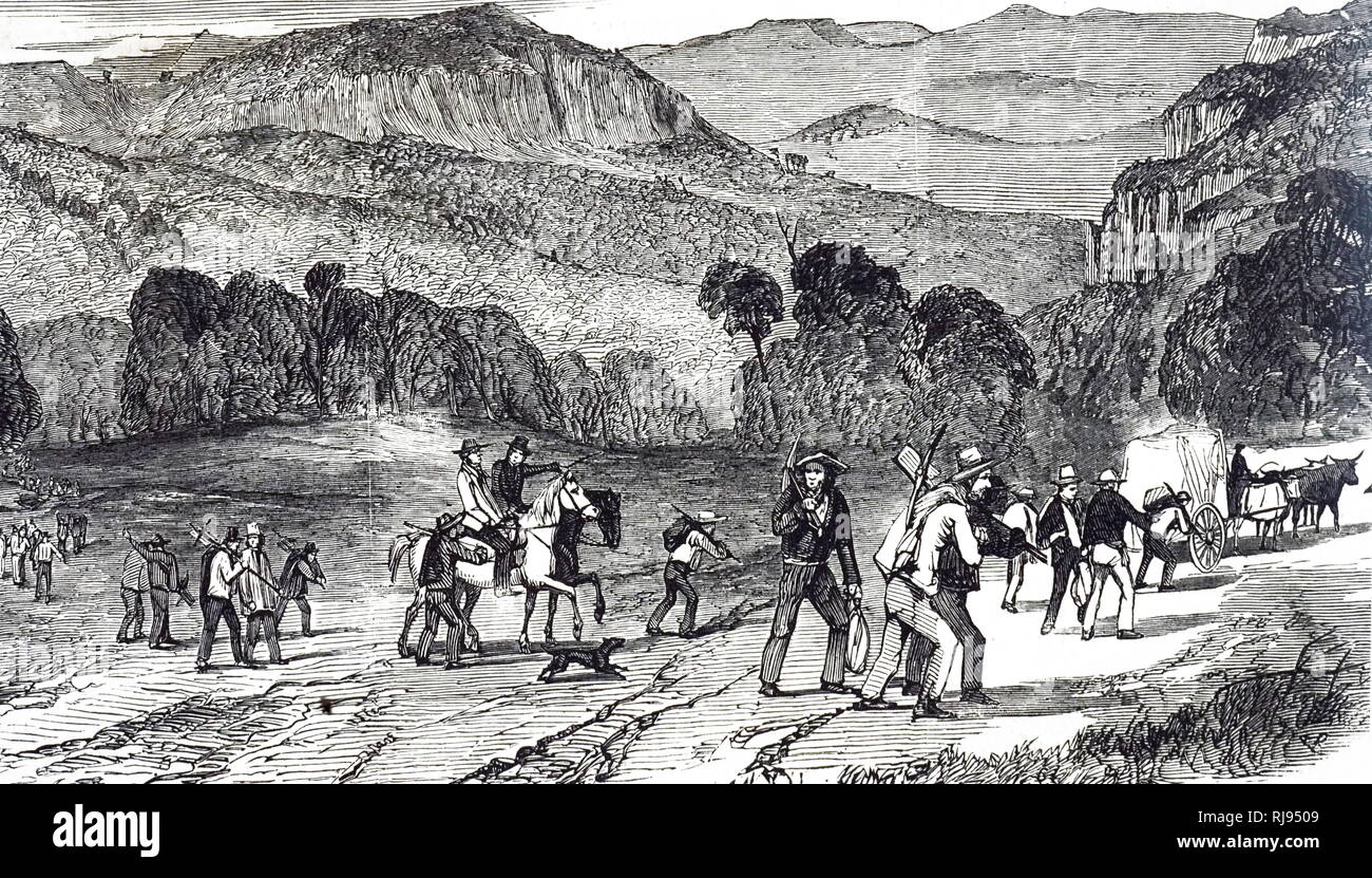 An engraving depicting diggers on their way to the gold fields, Bathurst District, Australia. Dated 19th century - Stock Image