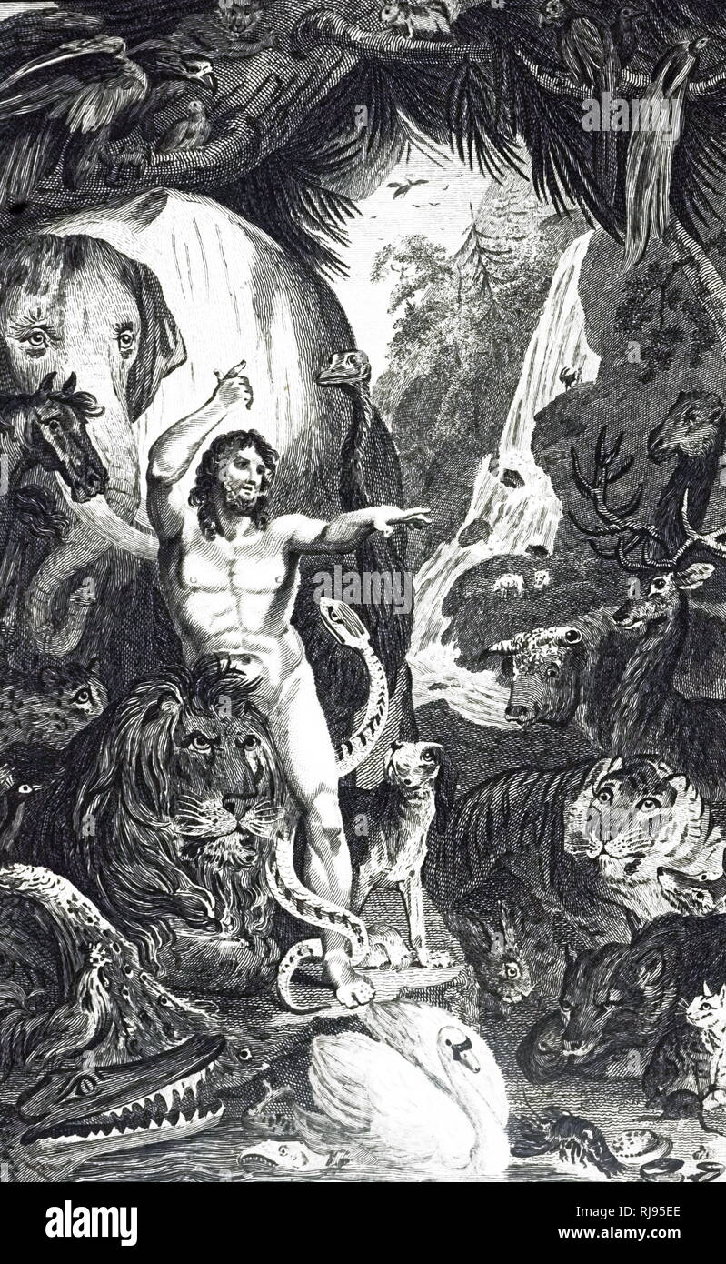 An engraving depicting Adam admiring the beautiful works of God's creation. Dated 19th century - Stock Image