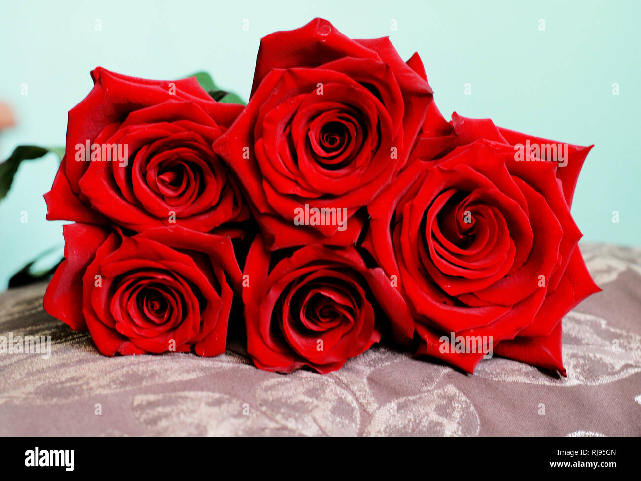 Beautiful Bunch Of Dark Red Roses On Pillow Close Up View Happy