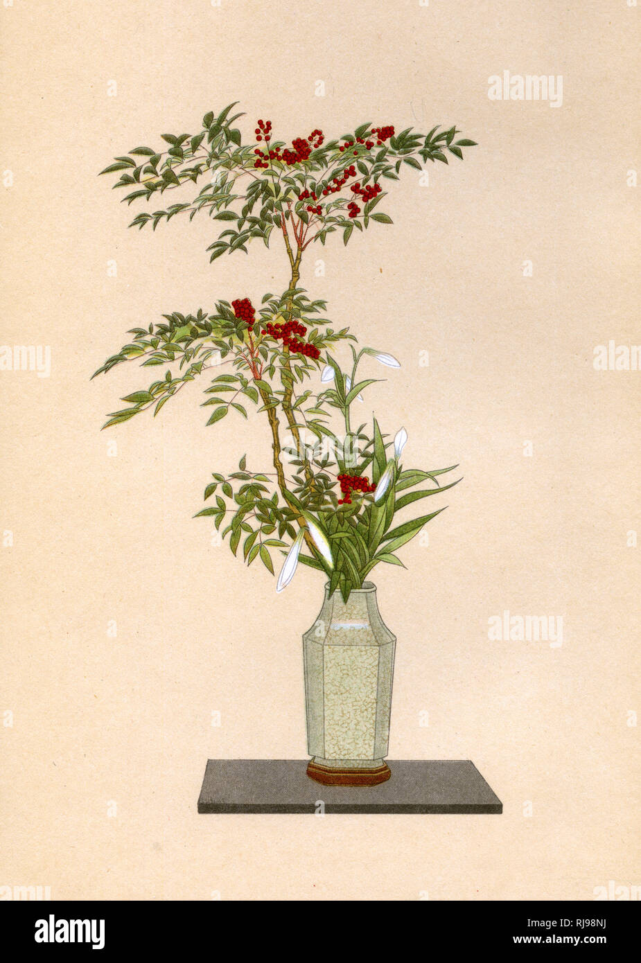 NANDIN and WHITE LILY an arrangement for placing in an alcove on New Year's Day Stock Photo
