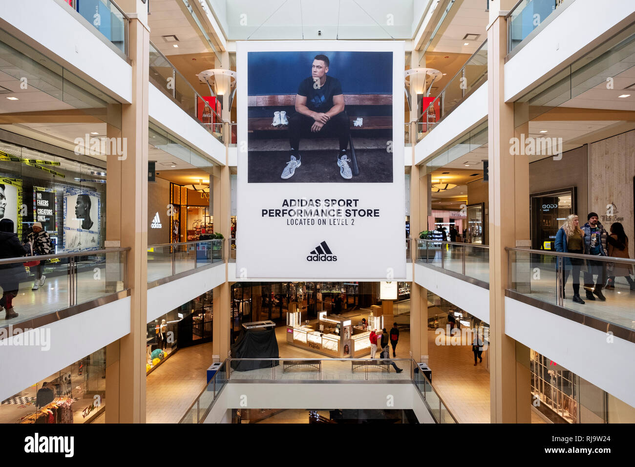 Large sized Aaron Judge advertisement for Adidas at the Queens Center Mall in Elmhurst, Queens, New York City - Stock Image