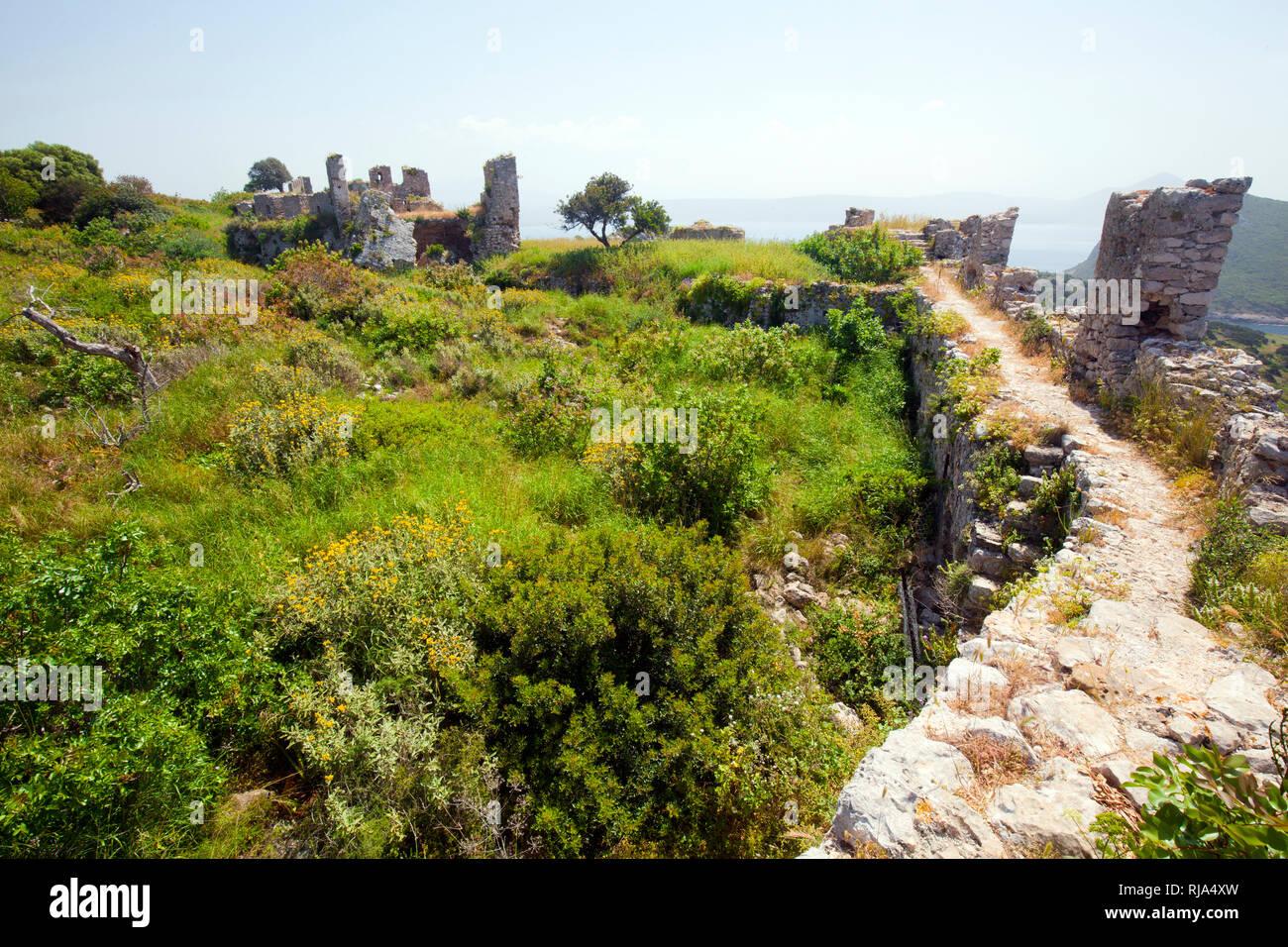 Macchia neben der Ringmauerkrone der Ruine Paleo Kástro in Griechenland - Stock Image