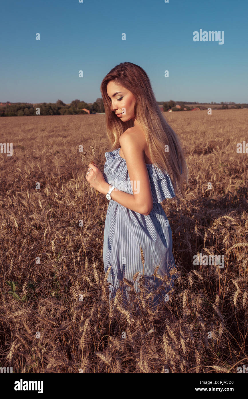 Girl in a wheat field in summer in a blue dress and wheat in the hand of ears of corn. A woman walks across the field, long hair casual makeup. Happy - Stock Image