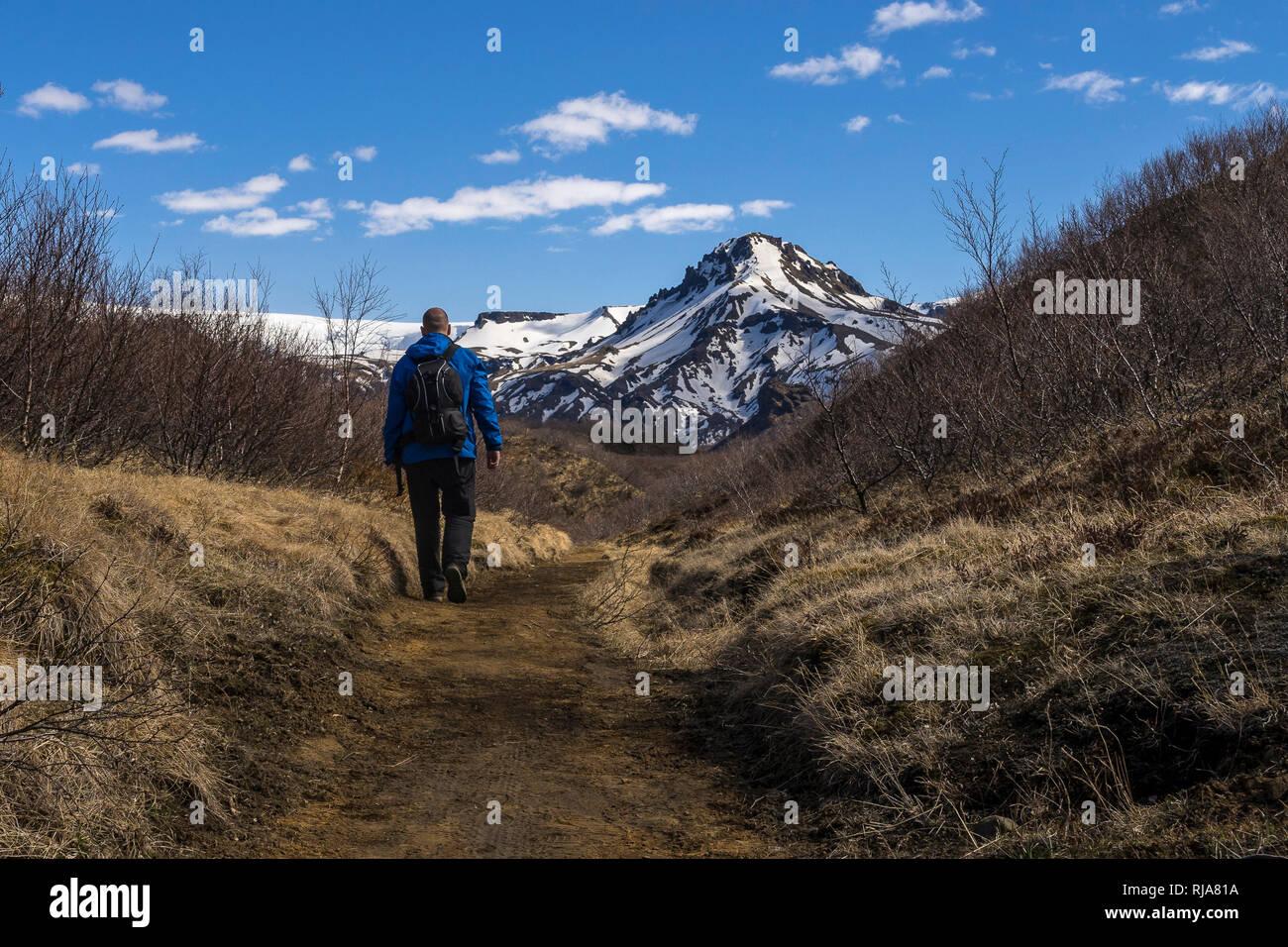Nordeuropa, Island, Thorsmörk, Wanderer auf dem Laugavegur im isländischen Hochland Thorsmörk - Stock Image